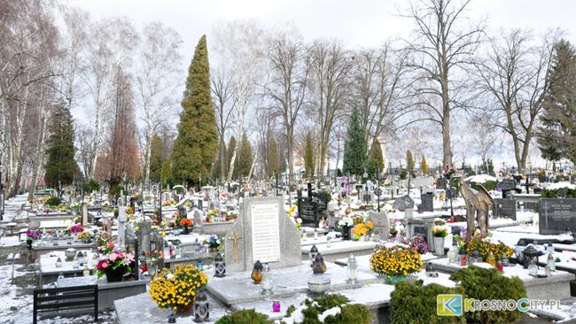 Na cmentarzu zostanie 30 drzew?