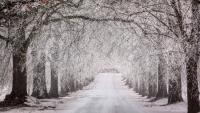 Nadchodzi zmiana pogody. W piątek opady śniegu, a w sobotę i niedzielę nocami nawet -5°C
