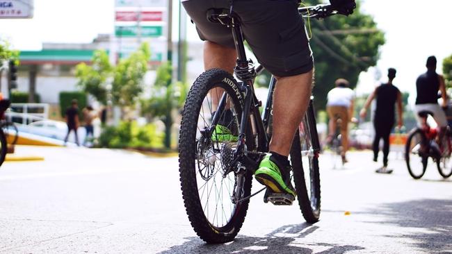 Konkurs ROWER POMAGA - promują leśne ścieżki rowerowe