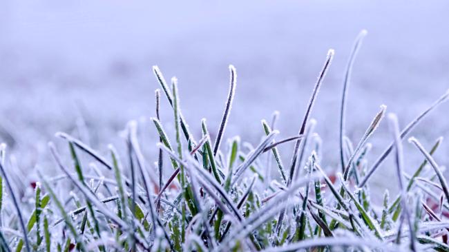 Z dnia na dzień chłodniej. Wystąpią spore przymrozki, w niedzielę wieczorem lekko poprószy śnieg