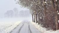 Poniedziałek wietrzny i ciepły, do 18°C. Od wtorku załamanie pogody, wieczorem śnieg