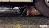Kierowca nie odpowie za śmiertelny wypadek