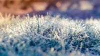 W piątek ochłodzenie, lokalnie przelotne opady krupy śnieżnej. Weekend z przymrozkami