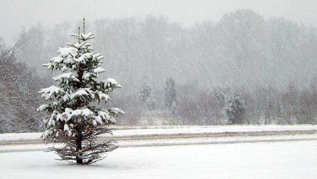 W sobotę intensywne opady śniegu. Sprawdź ostrzeżenie meteorologiczne
