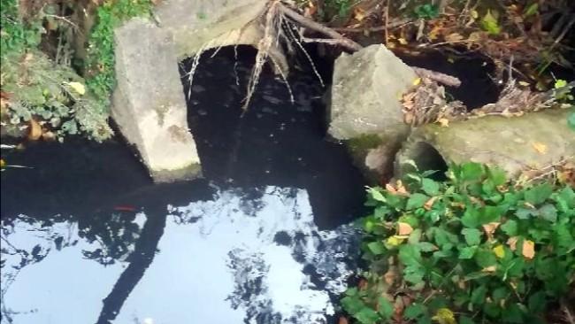 Czarna woda przy Korczyńskiej