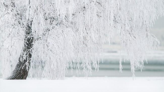Nadal chłodno, wtorek będzie mroźny. W najbliższych dniach więcej przejaśnień