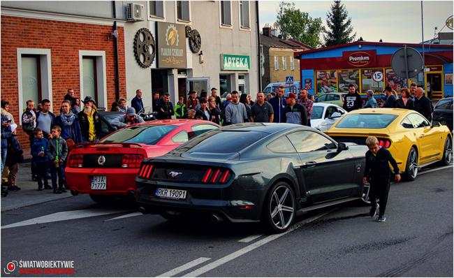 II zlot podkarpackich Mustangów w Korczynie [ZDJĘCIA]