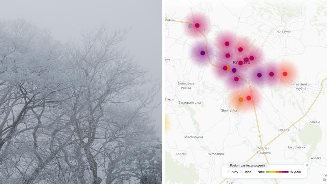 Geste mgły, szadź i zła jakość powietrza. Ostrzeżenie dla Podkarpacia