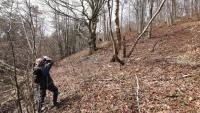 Barwinek: W lesie odkryto ludzkie kości