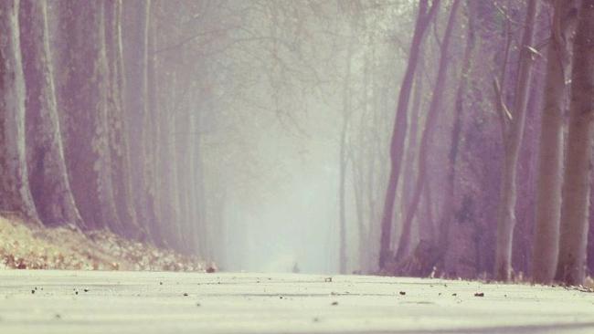 W środę zła jakość powietrza i mgły. Czwartek anomalnie ciepły, z lazurowym niebem i 24°C