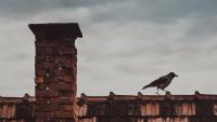 Od poniedziałku strażnicy miejscy będą kontrolować kotły grzewcze w domach
