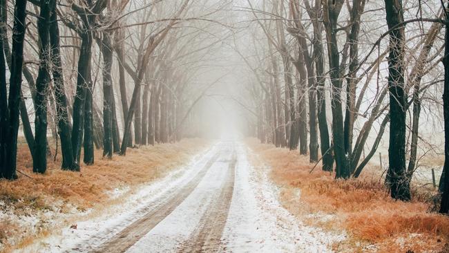 Początek tygodnia przyniesie przelotne opady śniegu. W poniedziałek nieco mocniej powieje