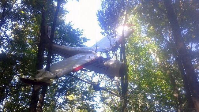 PODKARPACIE: Leśnicy znaleźli porzuconą awionetkę. Trwają poszukiwania pilota