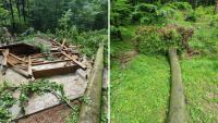 """Drzewo zniszczyło altanę przy iwonickiej """"Bełkotce"""" [ZDJĘCIA]"""